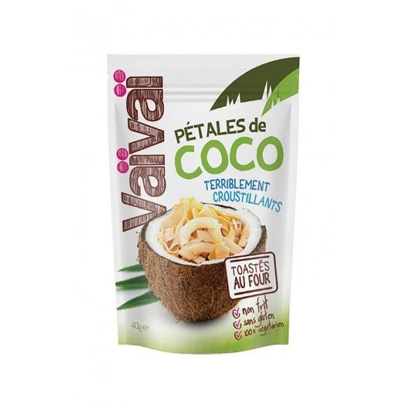 Pétales de Coco toastés au four 12 x 40g