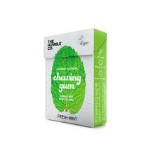 Présentoir Chewing Gum Menthe fraîche 24 x 20g