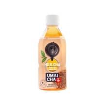 Thé glacé Thé vert Hoji Cha bouteille PET 24x350ml