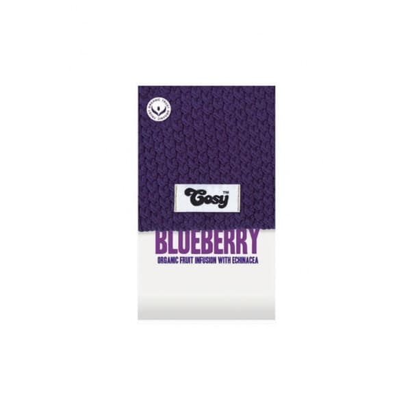 Infusion Blueberry sachet 20 x 2g BIO