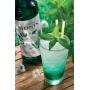 Sirop Menthe Verte bouteille verre 700ml