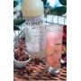 Sirop Anis bouteille verre 700ml