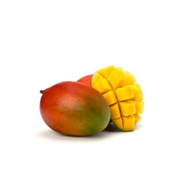Lot de 4 Boba perles Mangue pot 3.200kg